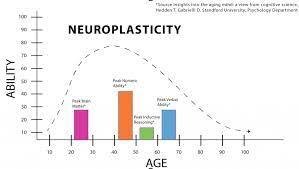 neuroplas